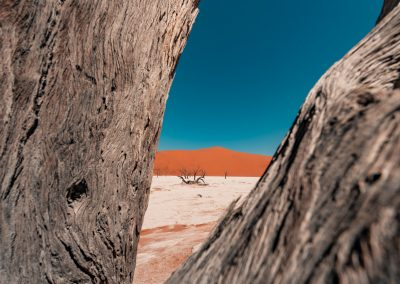 A.Heinrich_Namibia_E_10mm_F5.6HyperWideHeliar_Voigtländer (6)